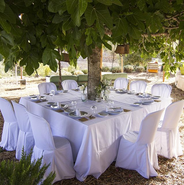 Can Domingo Weddings